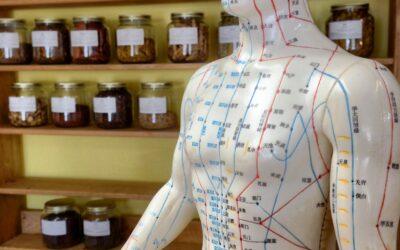 Til dig, der drømmer om at tage en akupunktur uddannelse i Århus