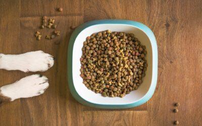 Acana hundefoder – høj kvalitet til din hund